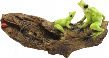 Frogs on Log