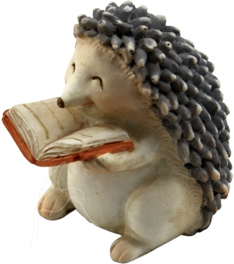 SPECIAL - Mini Echidna with Book