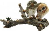 SPECIAL - Owls on Log