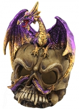 Purple Dragon on Skull