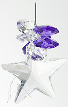 Swarovski Star Sun Catcher